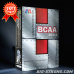 BCAA 20:1:1 - Muscle Transformers